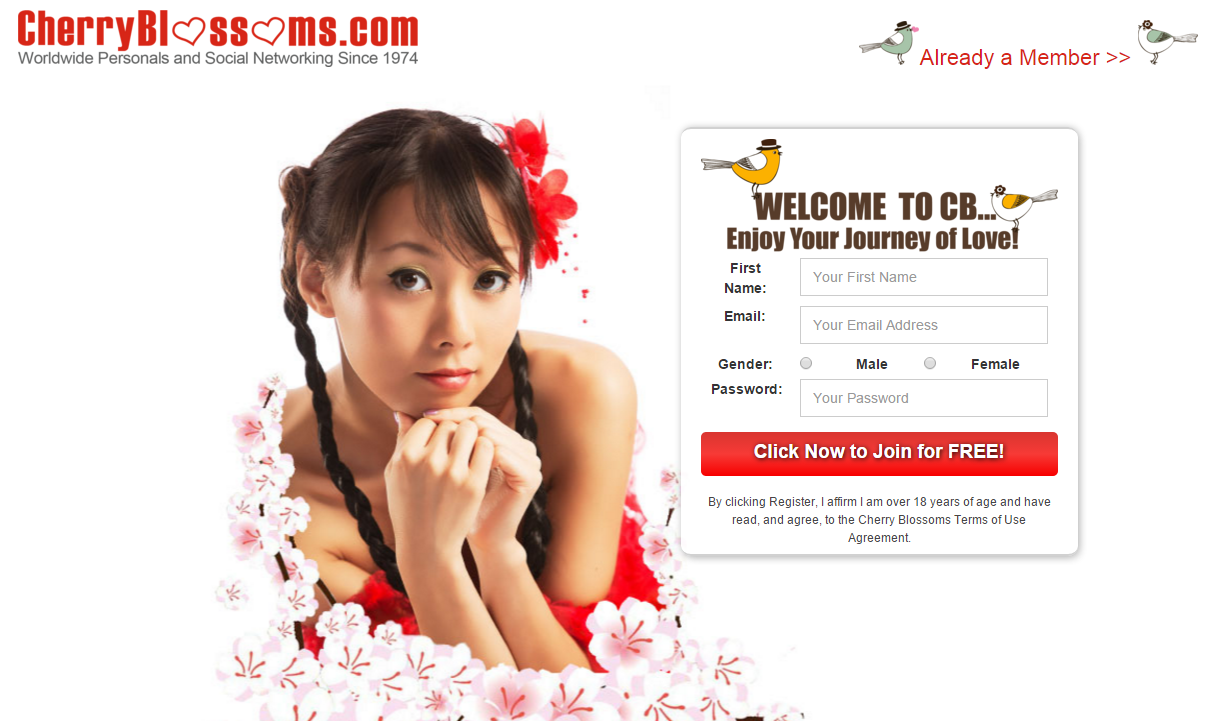 Dating site asian singles